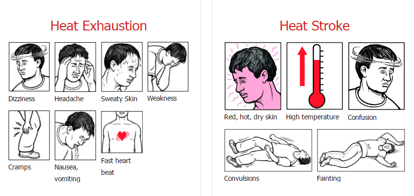 The symptoms of heat exhaustion: dizziness, headache, sweaty skin, weakness, cramps, nausea, vomiting, fast heartbeat. The symptoms of heat stroke: red, hot, dry skin; high temperature; confusion; convulsions, fainting.