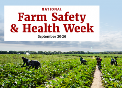 "Photo of workers in a field with the text ""National Farm Safety and Health Week, September 20-26"""