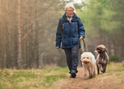 An older woman walks two dogs down a wooded path
